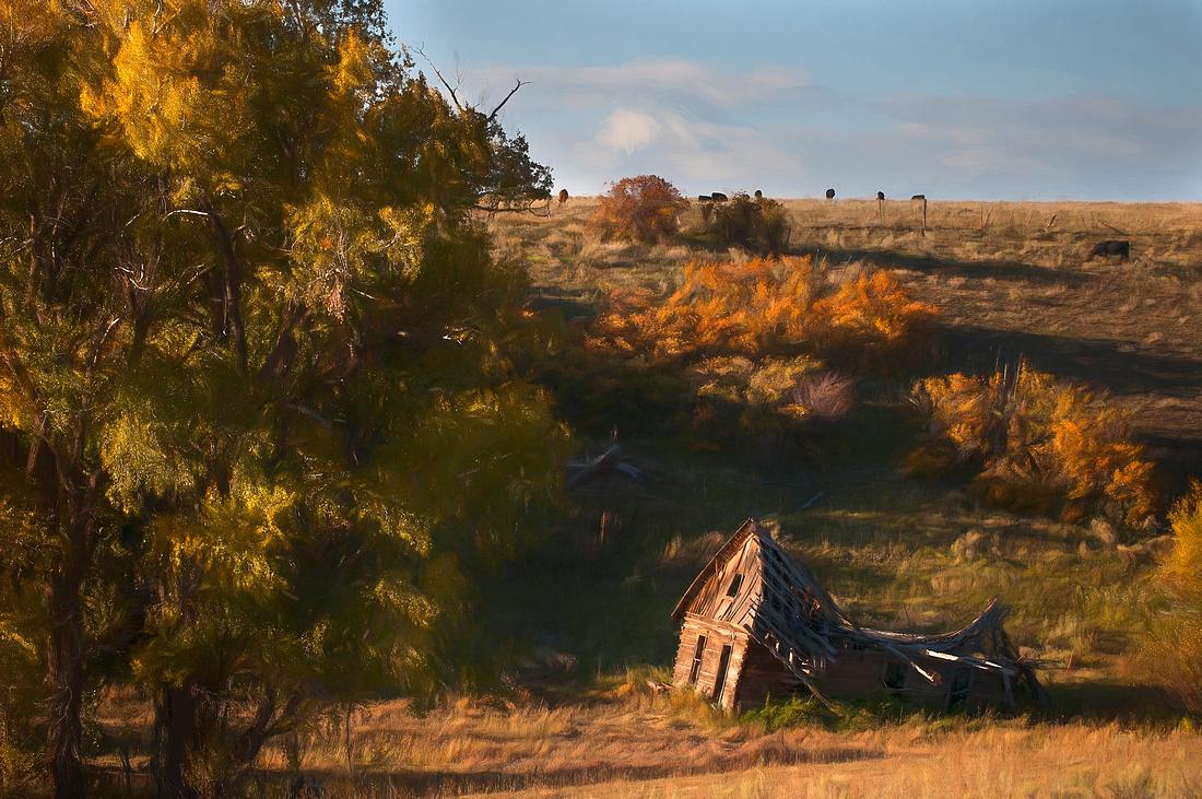 Last Dollar Road Ranch House