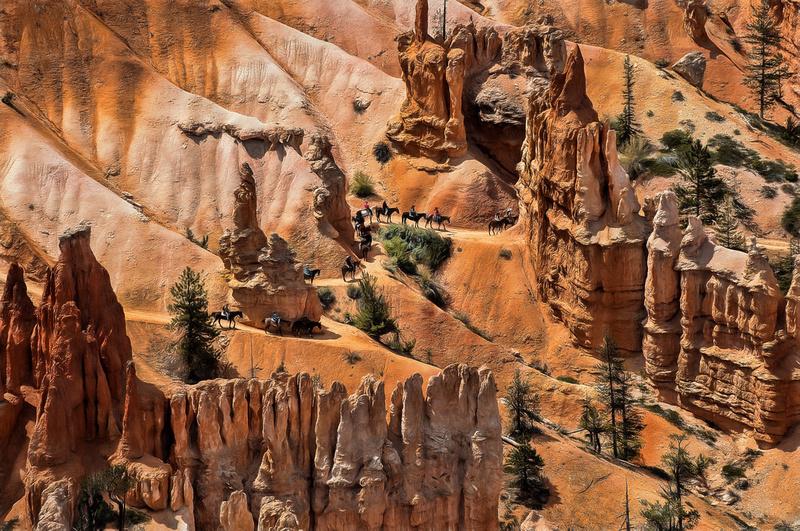 Bryce Canyon Mule Train, Utah